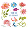 watercolor flower collection vector image vector image