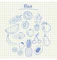 fruit doodles squared paper vector image