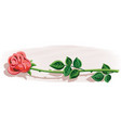 a rose with its stem and leaves vector image