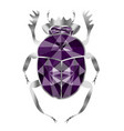 beetle of scarab from silver and amethysts vector image vector image
