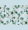 eucalyptus watercolor leaf seamless pattern vector image