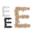 Floral letter E with vintage elements vector image vector image