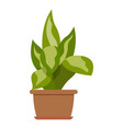 house plant icon flat style vector image