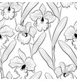 seamless orchid flowers sketched cattleya pattern vector image
