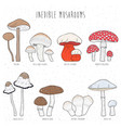 set inedible mushrooms with titles on white vector image