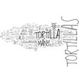what are tortillas text word cloud concept vector image vector image