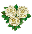 White roses with leaves isolated on white vector image vector image