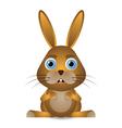 bunny rabbit vector image vector image