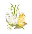 Delicate bouquet vector image