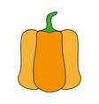 fresh healthy vegetable icon vector image vector image