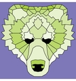 Green low poly lined bear vector image vector image