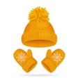 Hat with a Pompom and Mitten Set vector image vector image