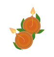 hindu religion candles and leafs airview icon vector image vector image