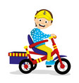 joyful boy riding a tricycle vector image