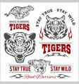 tigers custom motors club t-shirt logo on vector image