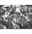 splatter paint texture distress grunge vector image
