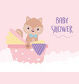 bashower squirrel in pram decoration vector image vector image