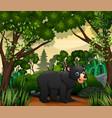 cute a bear walking in jungle vector image vector image