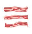 fresh bacon stripe pork meat healthy tasty vector image vector image