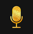 golden microphone icon on black background vector image
