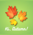 hello september autumn flyer template with vector image