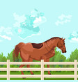 horse outdoors elegant detailed animal vector image