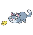 kitten is looking at a butterfly vector image vector image