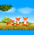 an awasome view with the fox run with their friend vector image