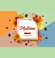 autumn with colorful falling leaves vector image vector image