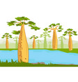 baobabs nea river beautiful baobab tree vector image