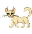 cute kitten running vector image