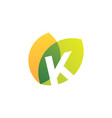 k letter leaf overlapping color logo icon vector image vector image