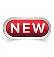 New web button vector image vector image