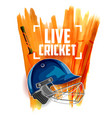 player helmet on cricket sports background vector image