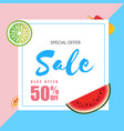 special offer sale best offer 50 off watermelon a vector image vector image