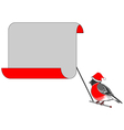 A Christmas bullfinch with a big blank paper vector image vector image