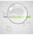 Abstract background with transparent water drops vector image