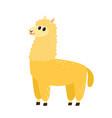 cartoon funny alpaca vector image
