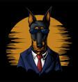 cool dobermann suit vector image