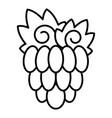 garden grape icon outline style vector image vector image