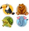 set of animals banner vector image