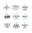 spice logo design set vanilla anise clove vector image