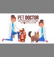 veterinarian female dog and cat medicine vector image