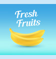 bananas on blue background with caption vector image