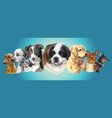 big and small dog breeds panorama vector image vector image