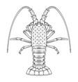 crab prawns lobster crawfish coloring page vector image vector image