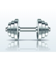 Metal realistic dumbbell vector image vector image