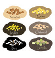 set cereal and grain emblems for packing vector image