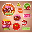 Set of sale labels and stickers discount shopping vector image vector image