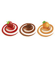 swirl with chocolate apricot strawberry vector image vector image